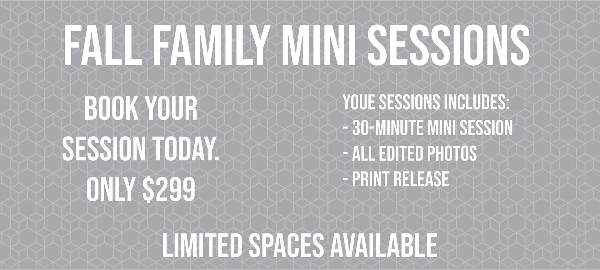 fall mini session details